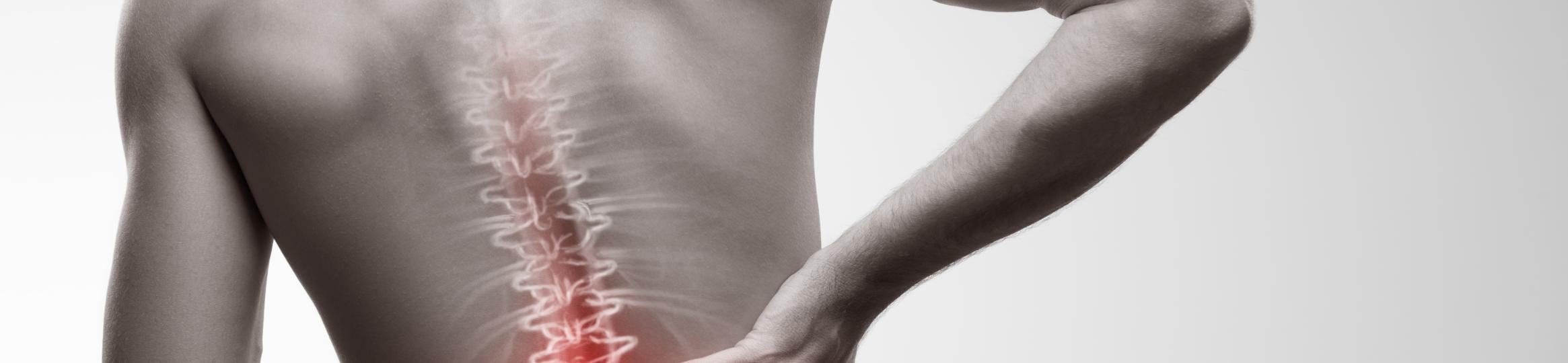 Spinal assessment